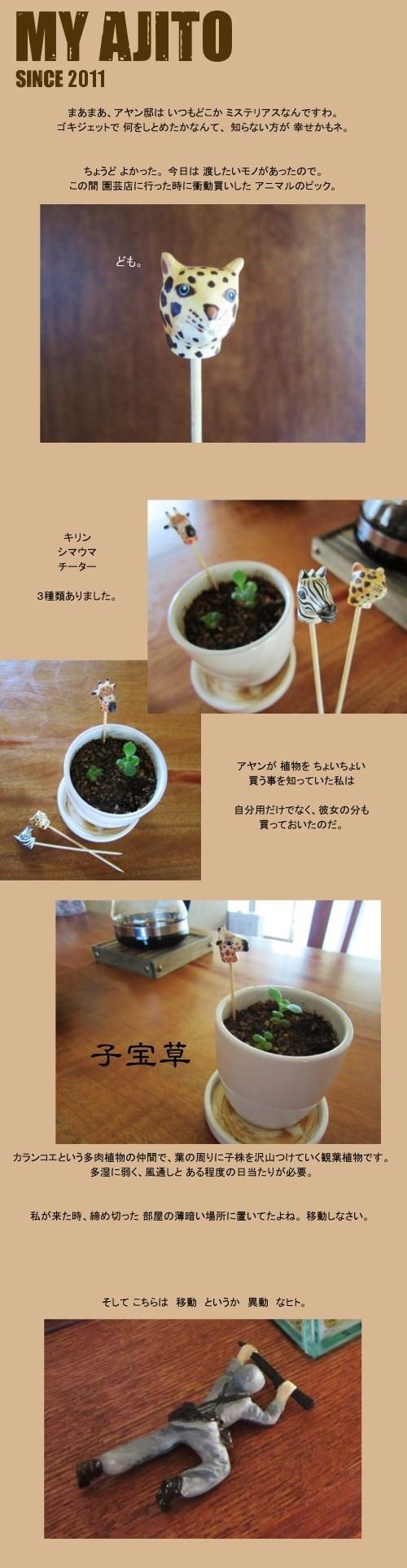 tsuke_05.jpg