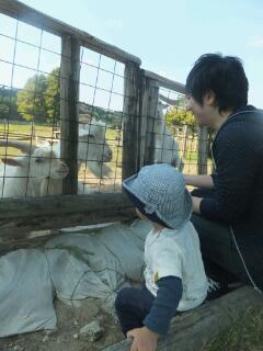 20121020_どんぐり村1