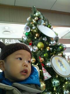 20121209_ツリーとちび太