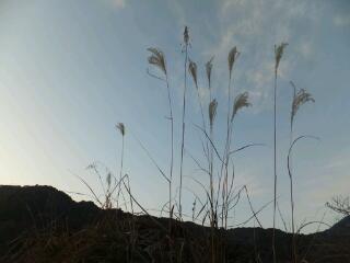 20121221_田舎1