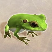 A2_蛙_大