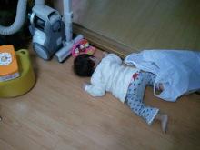 マメォのブログ-2011-04-16 14.26.41.jpg2011-04-16 14.26.41.jpg
