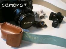 マメオのブログ-20119982512.jpg