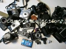 マメオのブログ-20119982715.jpg