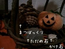 マメオのブログ-201192117409.jpg