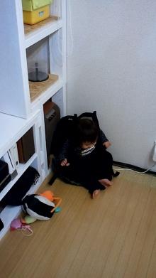 マメオのブログ-20111118211341-878.jpg