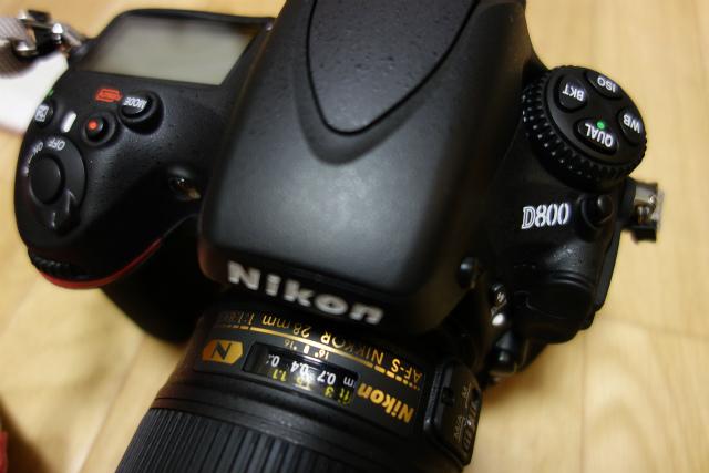 DSC00206p.jpg