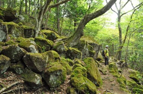 由布岳山開き (4)
