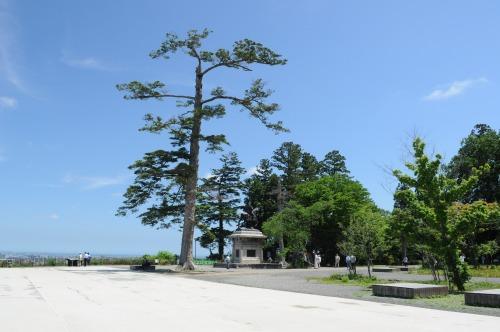 青葉城址公園 (7)