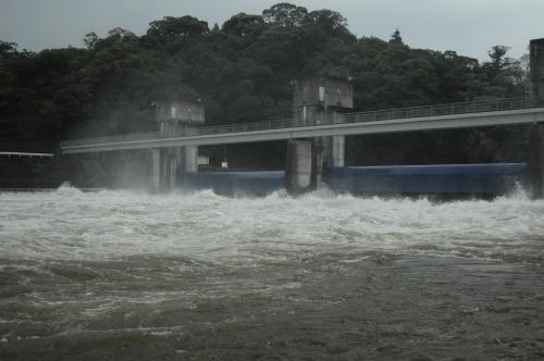 三隈川 (5)