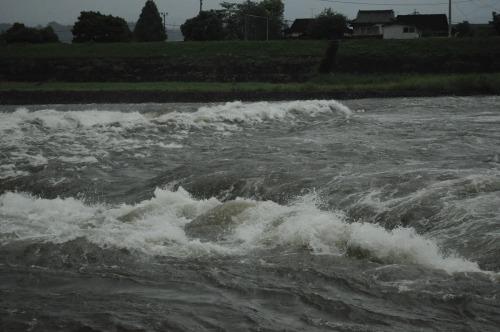 三隈川 (7)