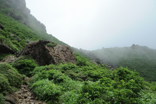 天狗ケ城・中岳 (5)