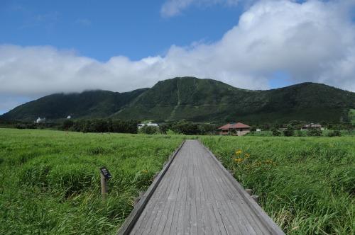 タデ湿原 (2)