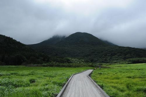 タデ湿原 (9)