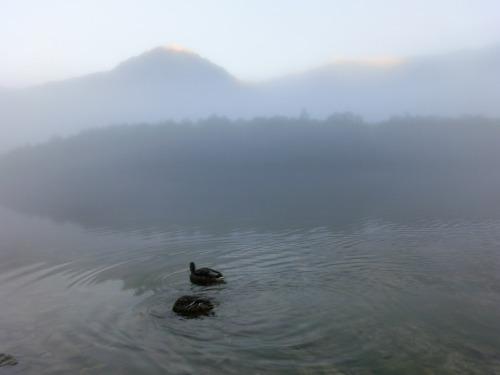 大正池 (3)
