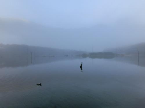 大正池 (7)