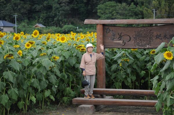 ひまわり園 (2)