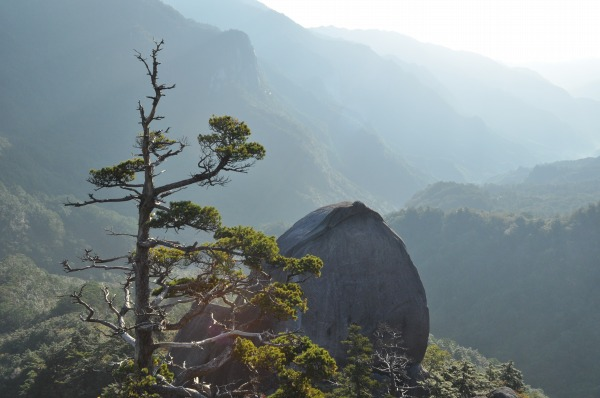 大崩山 (5)