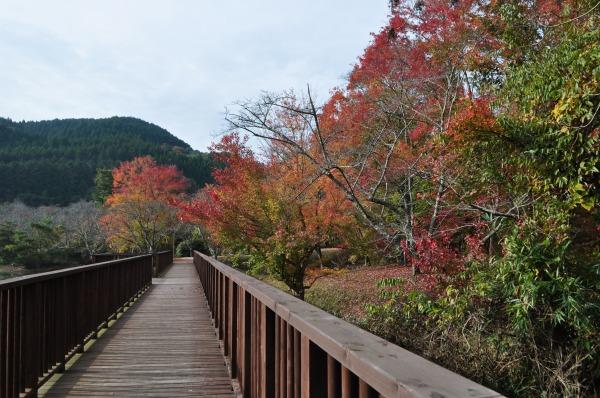 萩尾公園 (2)