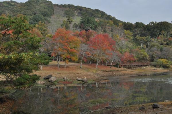 萩尾公園 (9)