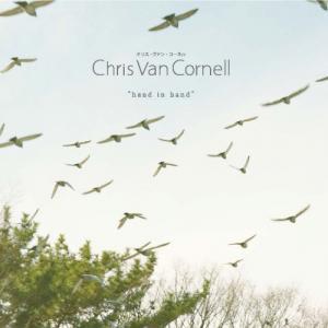 Chris+Van+Cornell+-+hand+in+hand_convert_20130415164333.jpg