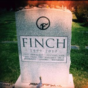finch300.jpg