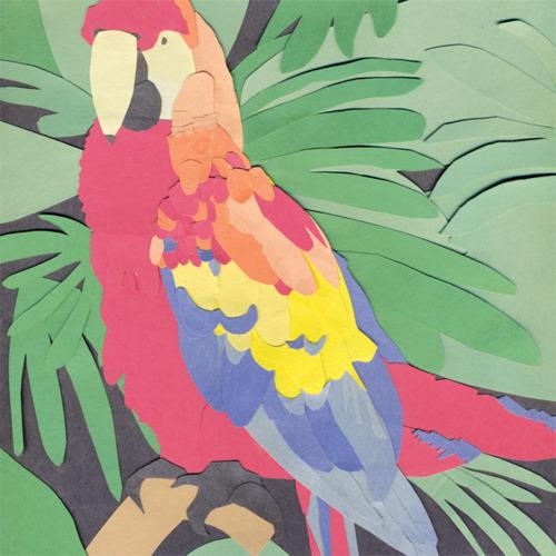 parrotflies.jpg