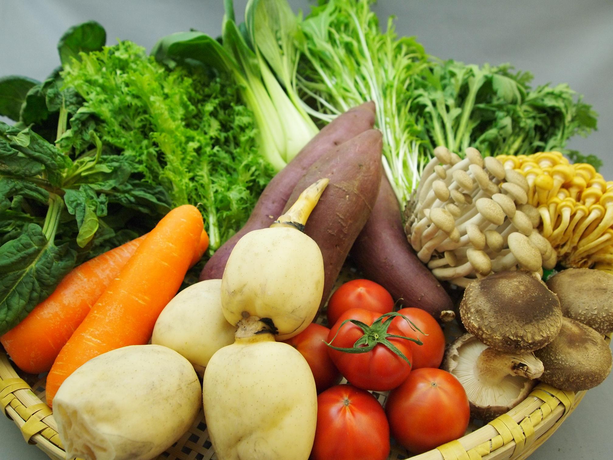 野菜盛 055