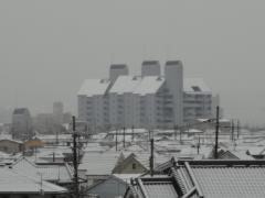 屋根が真っ白に