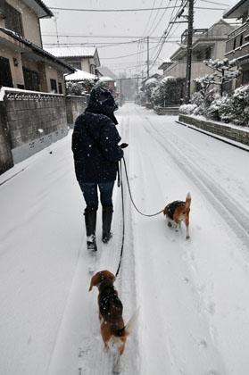 002雪の散歩