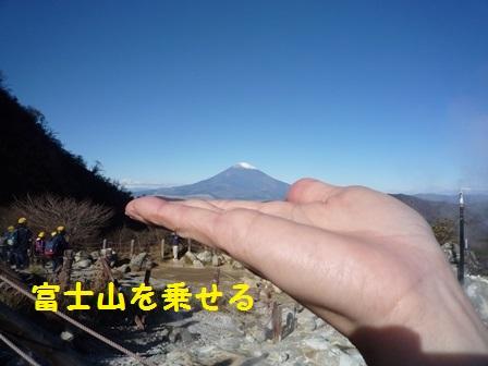 201411191154271ed.jpg