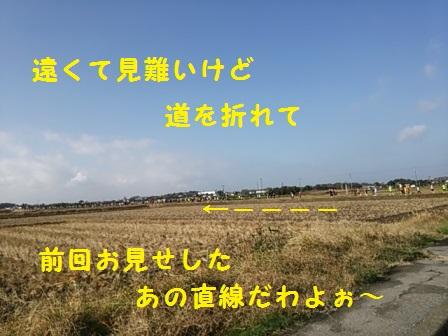 201412011515278cb.jpg