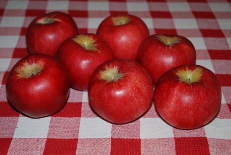 apple17-1.jpg