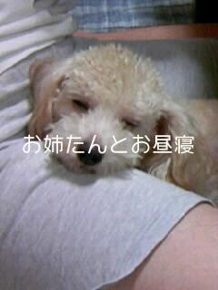 100917_1603~010002