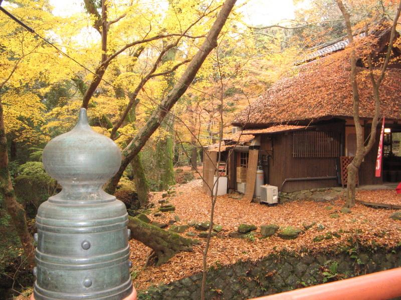 晩秋の水谷茶屋_1
