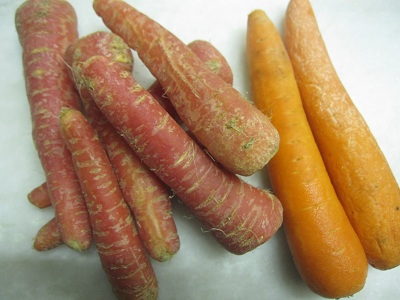 indiancarrot-oct12.jpg