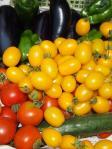 トマトの最盛期