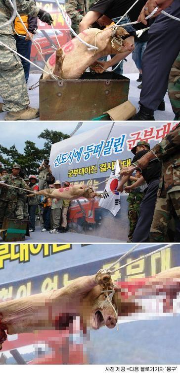 韓国 デモ4