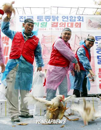 韓国デモ13