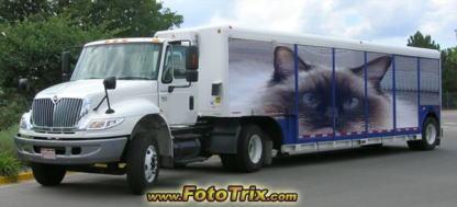 トラックにモモちゃん