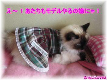 ハンドメイド洋服 モモ1