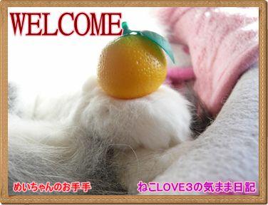 WELCOME めいちゃんのお手手鏡餅