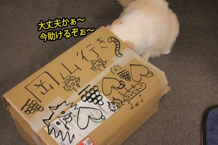 ガム男20141207-03