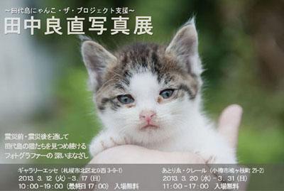 杉本真沙彌さん改作DM2月11日のコピー