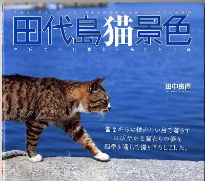 田代島猫景色本