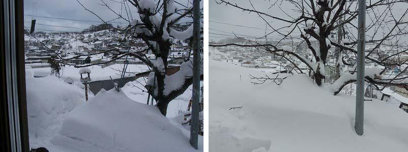 130309今日も大雪