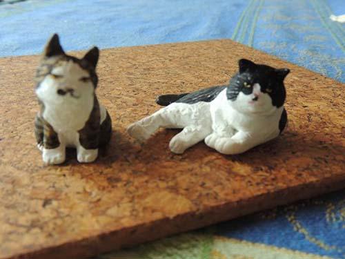 130326 夢太郎と猫太郎のコピー