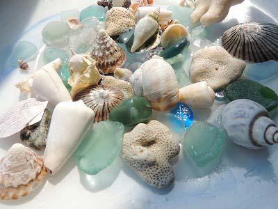 海の石DSCN6859