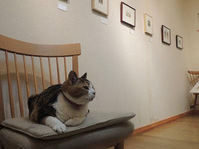 ⑦学芸員の椅子DSCN7154