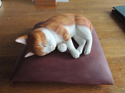 コロ猫DSCN8264